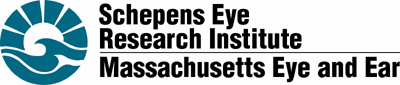Schepens Eye Research
