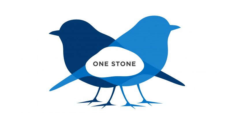 one stone - two birds